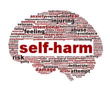 Self-Harm and Self-Care